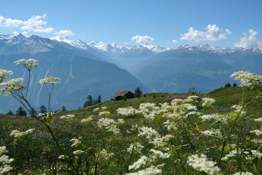 Aussicht u.a. auf Zinalrothorn (4221 m), Ober Gabelhorn (4062 m), Matterhorn (4477 m), Dent Blanche (4356 m)