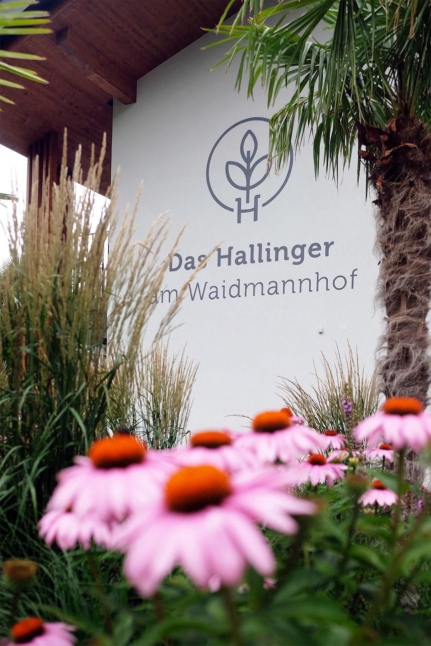 Pretty in Pink blüht es (üppig) in den Beeten des Hallinger am Waidmannhof, Logo-Gestaltung Barbara Pixner, Kreativraum in der Kohlstaette