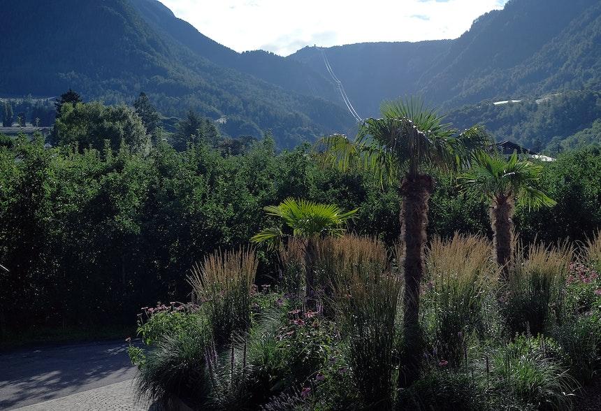 Abendstimmung auf der Trenkwalderschen Apfelplantage & Seilbahn zur Hochebene Merano 2000