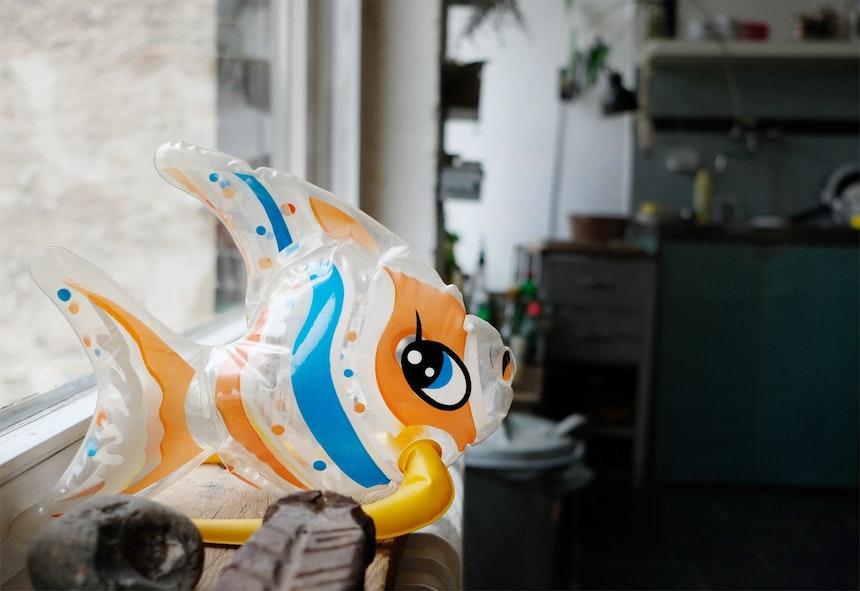 Der aufblasbare Fisch ist eines der Lieblingsdinge von Vince