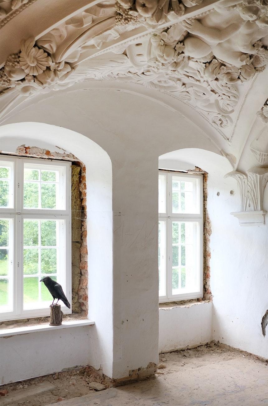 Blick aus dem Schlossfenster – »Horst«, Christiane Möbus, 2010
