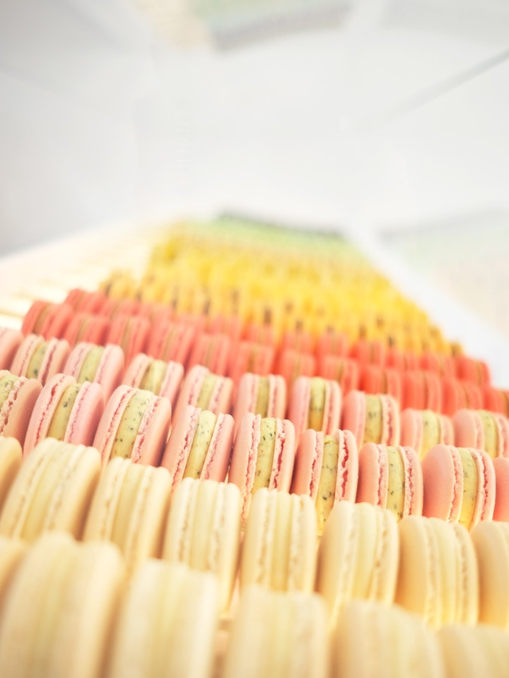 Loti Panton Macaron 5