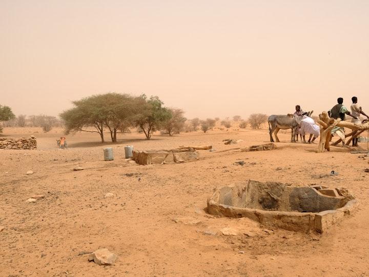 Naga Project Sudan 10