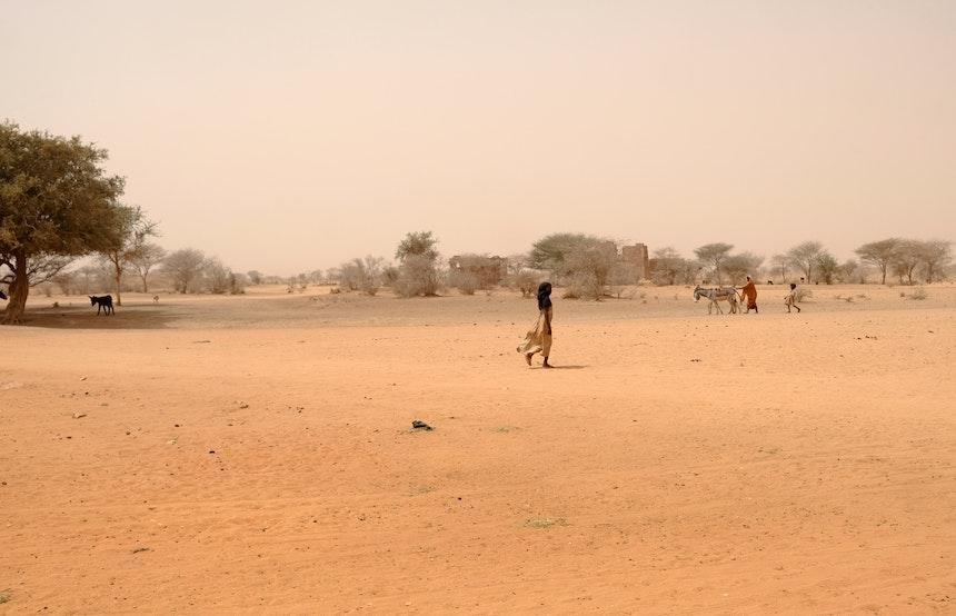 Naga Project Sudan 17