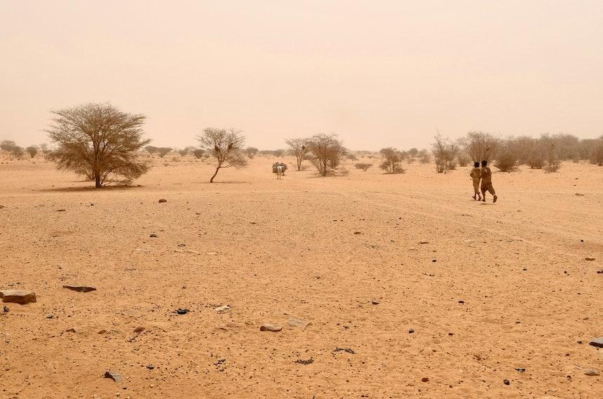 Naga Project Sudan 19