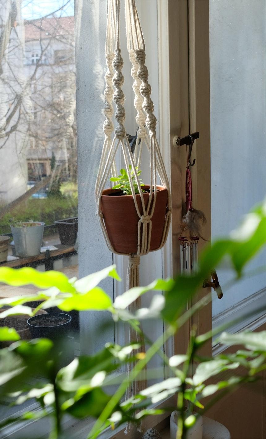 Selbst geknotet – eine der zahlreichen Blumenampeln aus Macramee