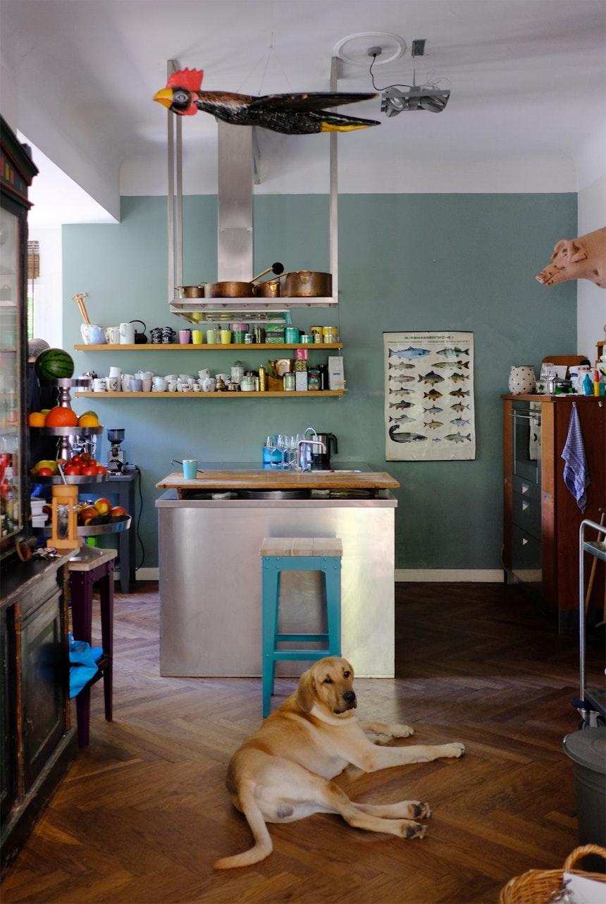Haus & Haus-Hund, Haus-Schwein (Design Starke Beest)