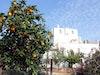 Herbstreise Nach Apulien Masseria Alchimia 1