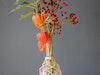 Lampionblumen Makramee 4