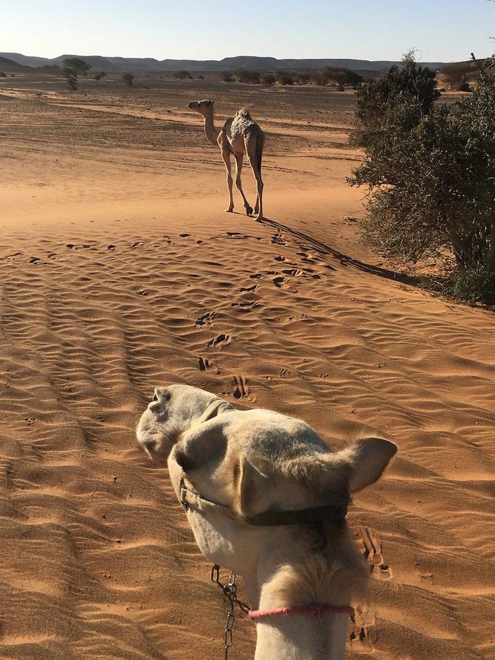 Meroe Sudan 20