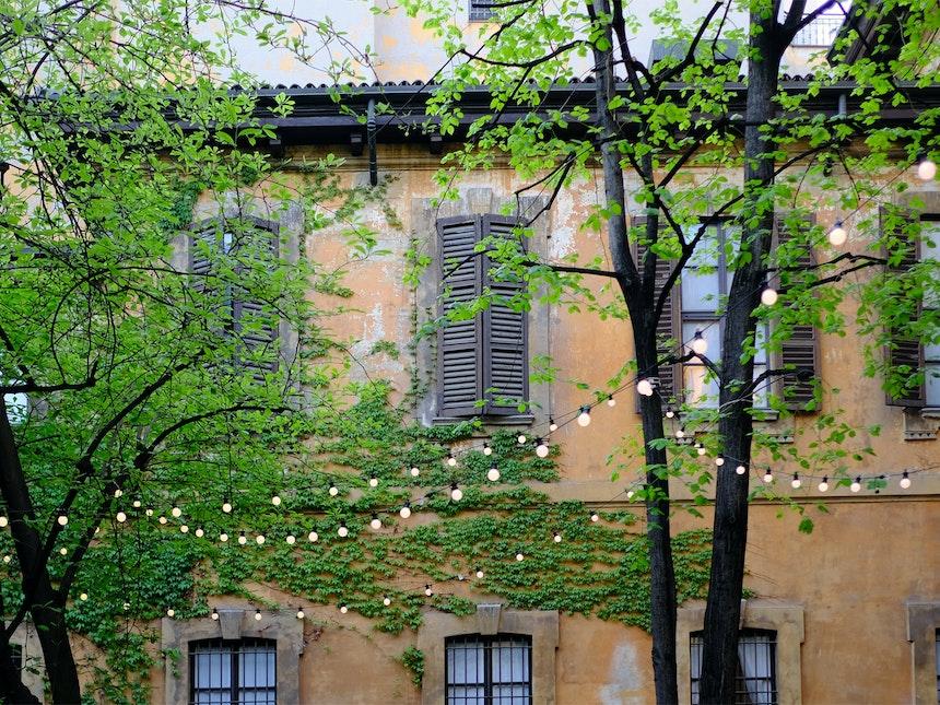 Hay At Palazzo Clerici 11