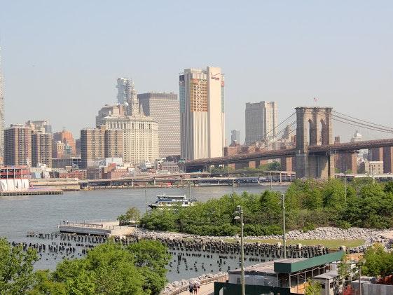 New York Diary 3 Fort Greene Brooklyn Heights 10
