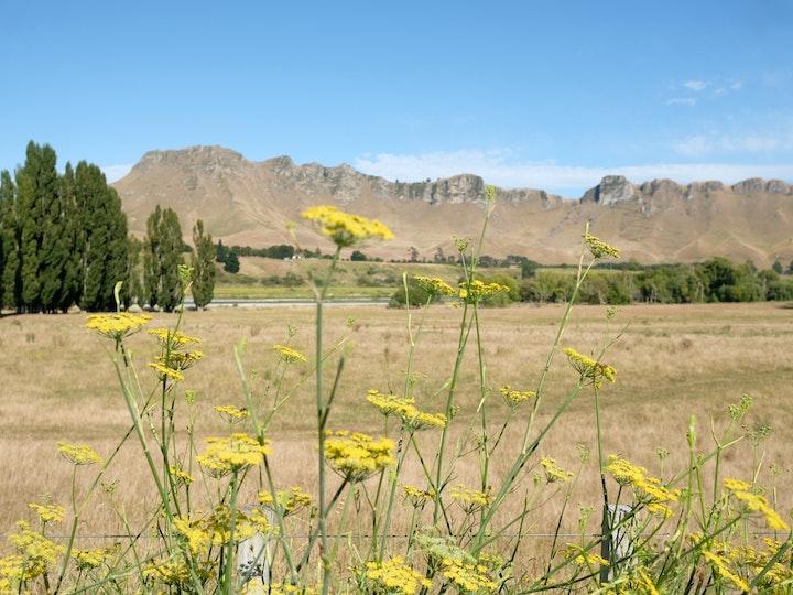 Neuseeland Nordinsel Havelock North Tuki Tuki Valley 3