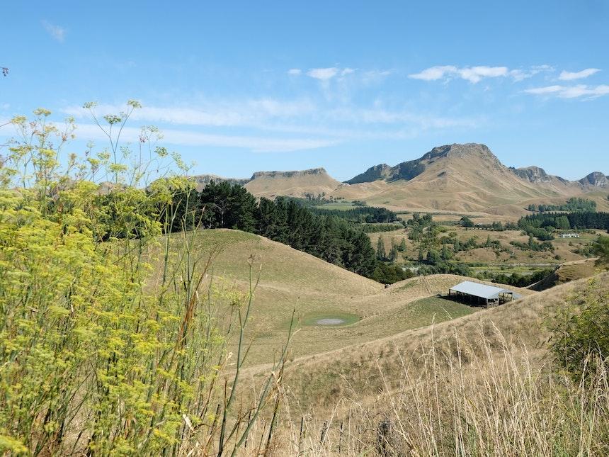 Neuseeland Nordinsel Havelock North Tuki Tuki Valley