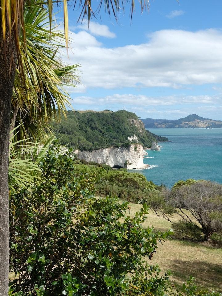 Neuseeland Nordinsel Coromandel Coast Walk 3