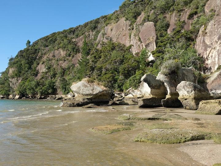Neuseeland Nordinsel Coromandel Maramaratotara Bay 2