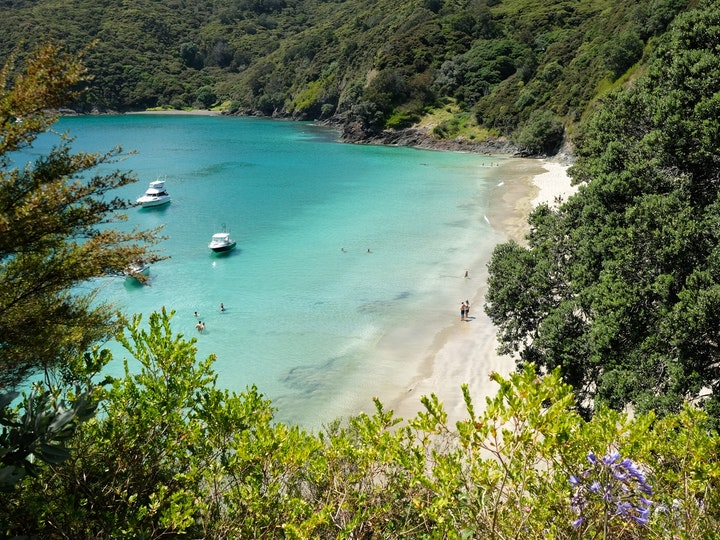 Nordinsel Neuseeland Oke Bay Rawhiti 5