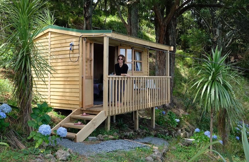 Treehouse – Airbnb »Kauris's Nest« zwischen Kauribäumen, Whangarei