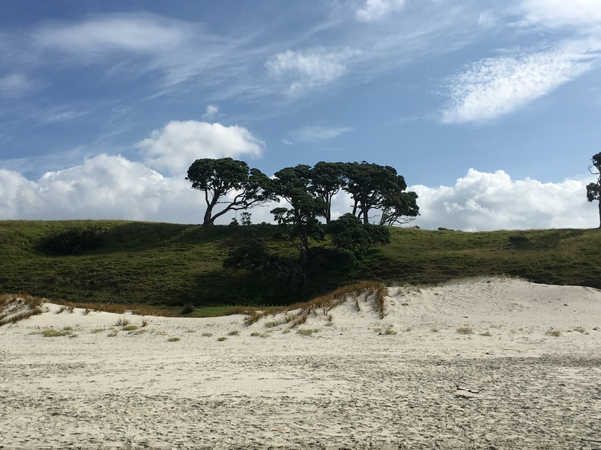 Nordinsel Neuseeland Pakiri Beach 2