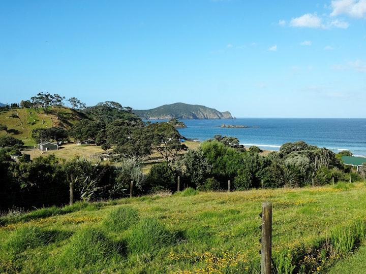 Nordinsel Neuseeland Elliot Bay 5