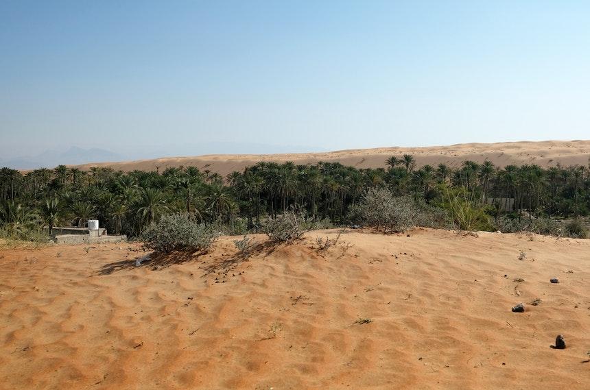 Ausläufer der Rimal Al Wahiba Wüste