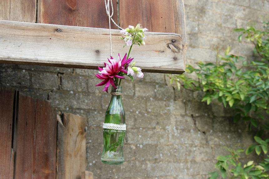 Schmetterlingsgarten Hochzeitslocation In Der Uckermark 7