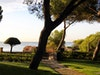 Sonnentage Im H10 Punta Negra Hotel Mallorca 1
