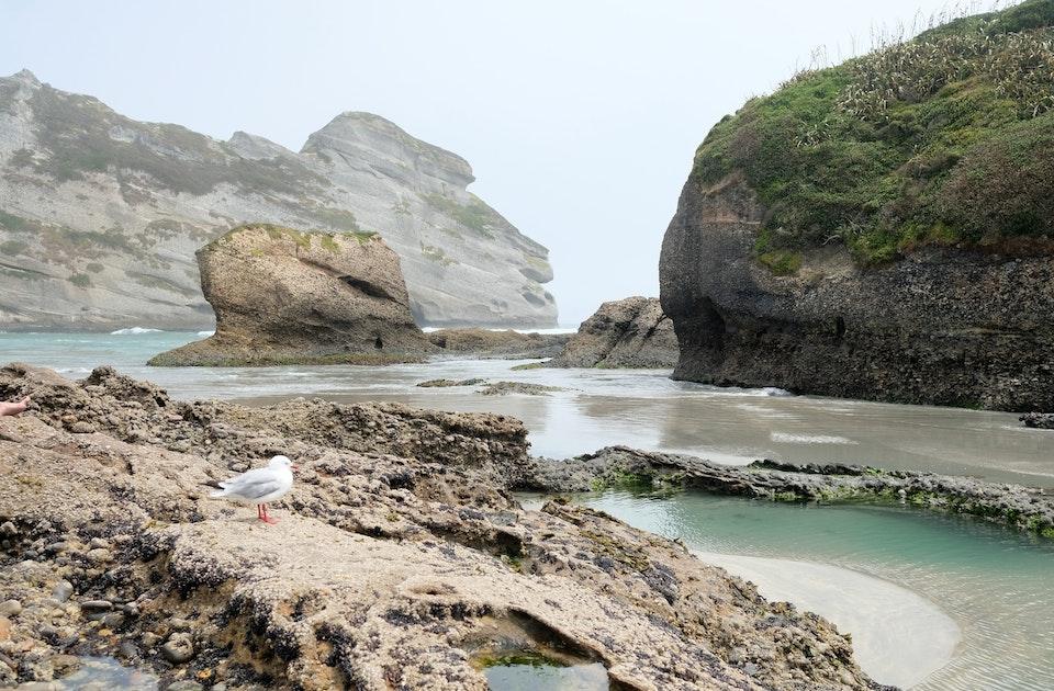 Natur in allen Nuancen – Neuseelands Südinsel