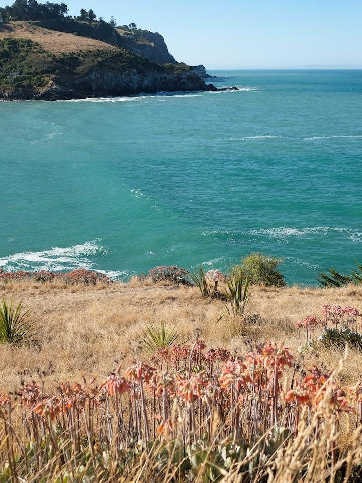 Sumner Suedinsel Neuseeland 8