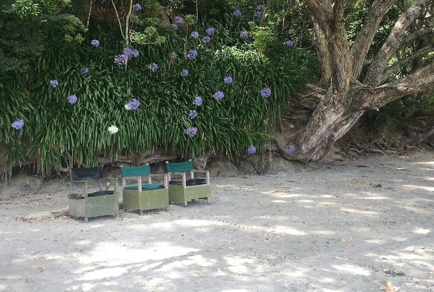 Palm Beach mit coolen Outdoormöbeln für die Gäste