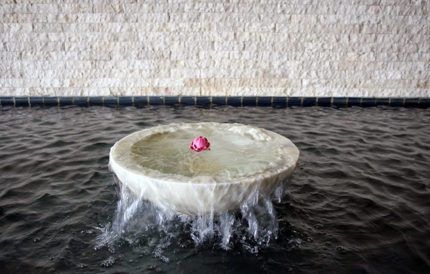 Lotusblüte im Wasserspiel