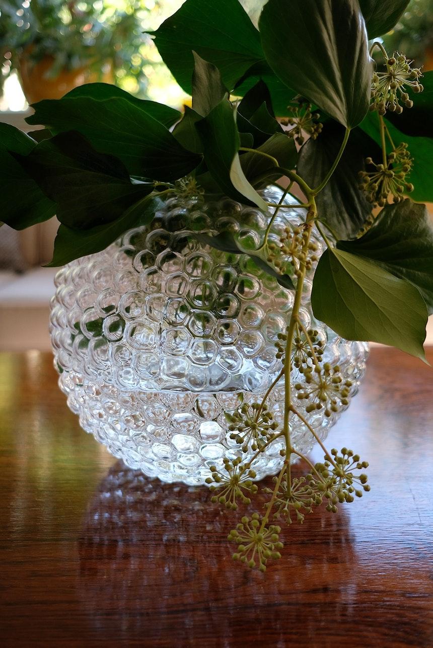 Vase »Dagg« (Svensk Tenn) mit Efeuranken aus dem Garten