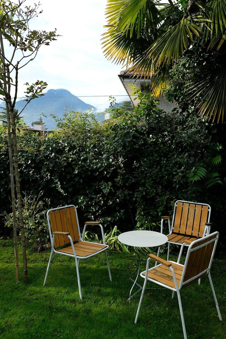 Schweizer Vintage Caféhausstühle (Karasek) unter Palmwedeln